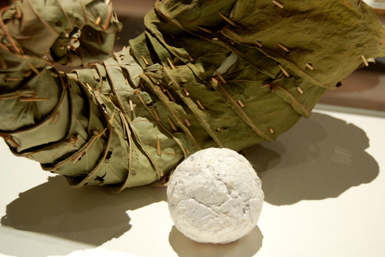 vivoverde-mostra-naturae-2006-12