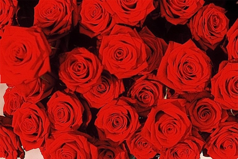 vivoverde-installazione-rose-a-teatro-2