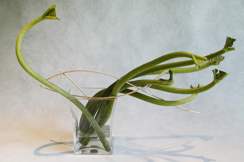 vivoverde-varie-arte-natura-27