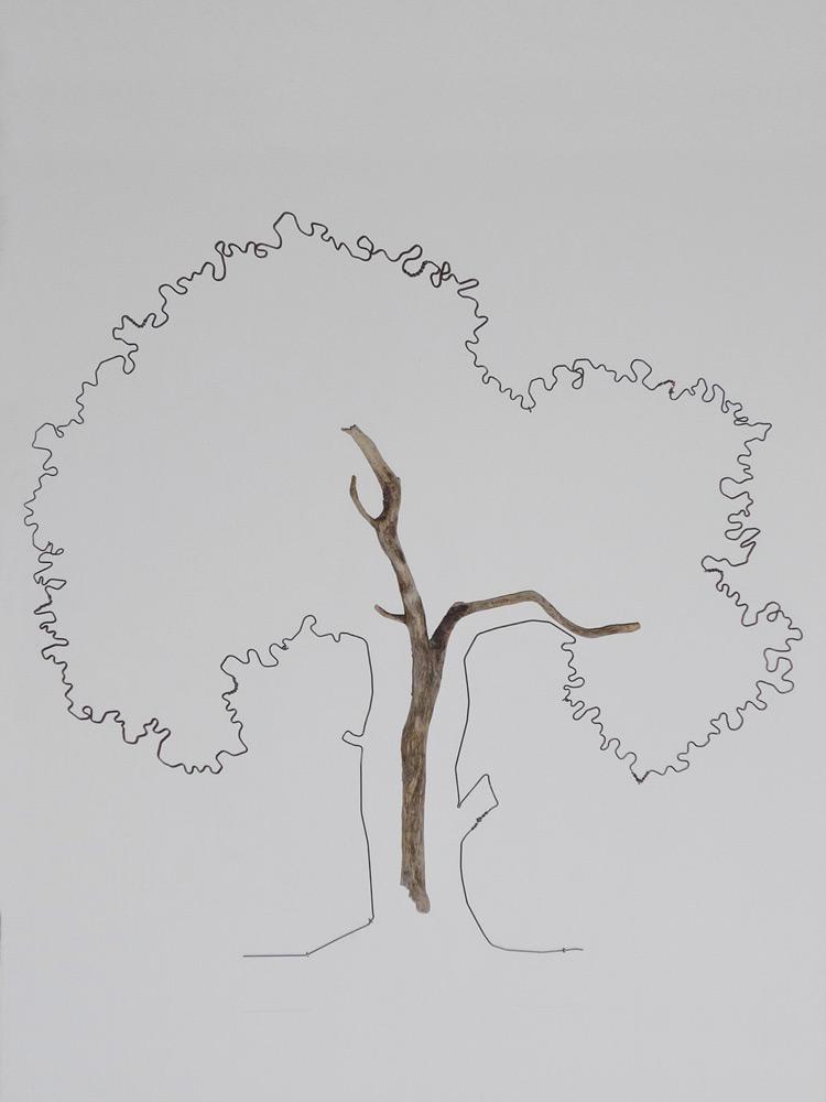 vivoverde-varie-arte-natura-54
